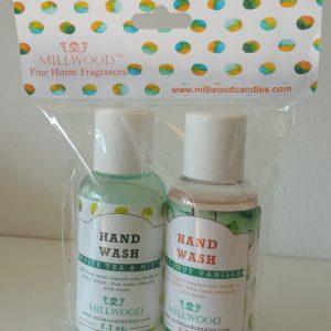 Hand wash sampler (2- 2.7oz) - Coconut Vanilla and White Tea and Mint